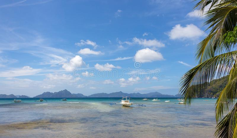 Scenic tropical panorama landscape. Palm tree and white boat on seashore during low tide. Philippines, island Palawan, El Nido. Tropical vacation and tourism royalty free stock image