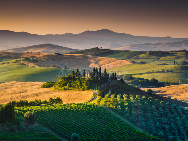 Scenic Tuscany landscape with rolling hills and valleys at sunrise. Scenic Tuscany landscape with rolling hills and valleys in golden morning light, Val d'Orcia royalty free stock image