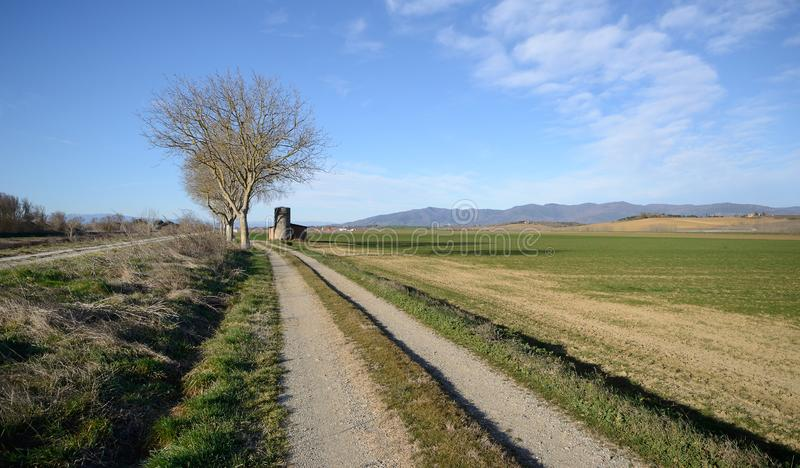 Scenic view of agricultural fields n the Tuscan countryside stock image