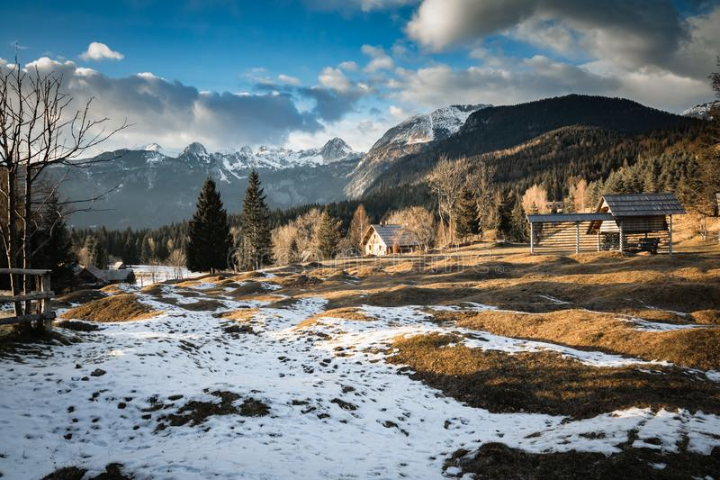 Scenic view in alpine forest mountains with isolated wooden chalet house in idyllic sunny winter environment, pokljuka, slovenia. Scenic view in alpine forest stock image