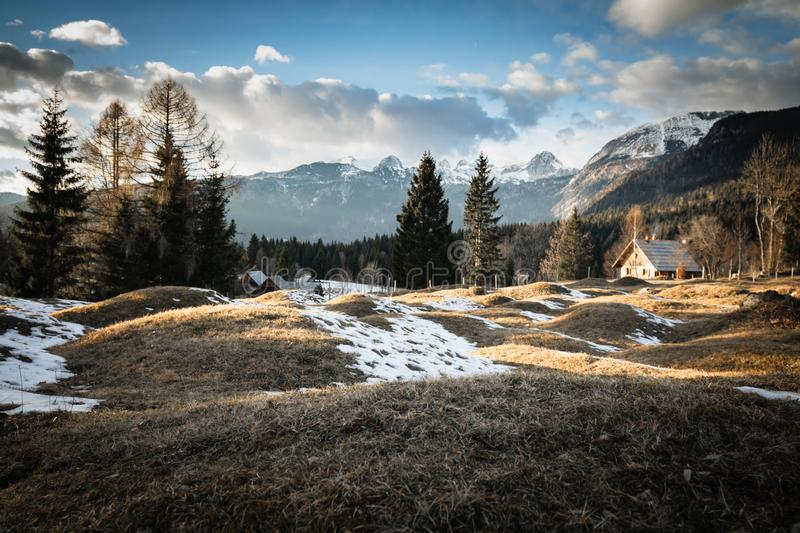 Scenic view in alpine forest mountains with isolated wooden chalet house in idyllic sunny winter environment, pokljuka, slovenia. Scenic view in alpine forest royalty free stock photo