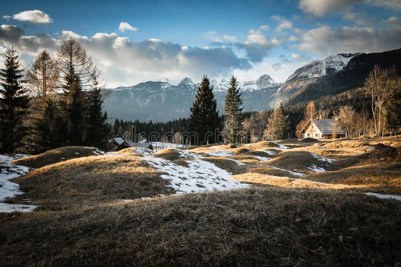 Scenic view in alpine forest mountains with isolated wooden chalet house in idyllic sunny winter environment, pokljuka, slovenia. Scenic view in alpine forest stock images