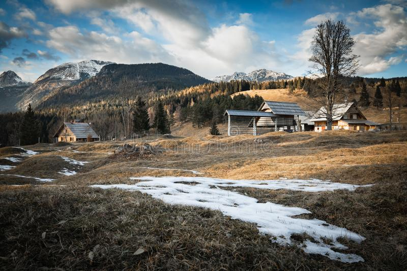 Scenic view in alpine forest mountains with isolated wooden chalet house in idyllic sunny winter environment, pokljuka, slovenia. Scenic view in alpine forest stock photography