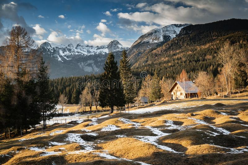 Scenic view in alpine forest mountains with isolated wooden chalet house in idyllic sunny winter environment, pokljuka, slovenia. Scenic view in alpine forest stock photos
