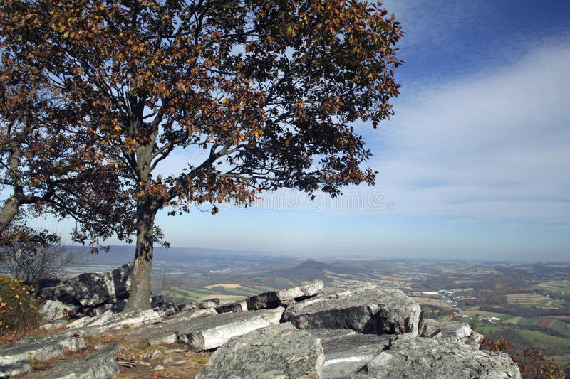 Scenic view during autumn royalty free stock photography