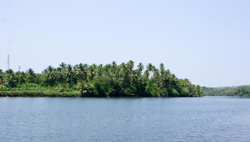 Download Scenic View Of Backwaters Of Kerala With Coconut Trees On It's Banks Stock Image - Image: 73861203