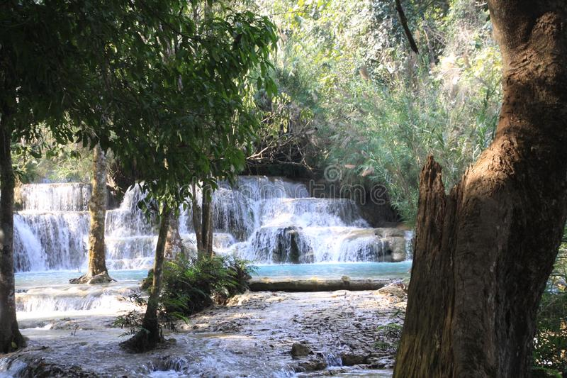 Scenic view on cascades and natural blue pool of idyllic Kuang Si waterfalls in jungle stock images