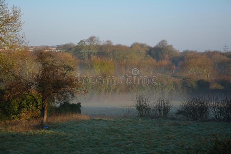 Early morning mist stock images