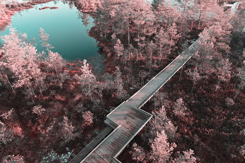 Scenic view from drone of wooden boardwalk stock photography