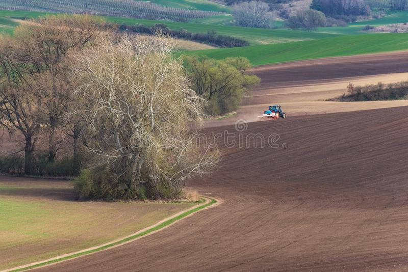 Scenic View Of Farming BlueTractor With Red Harrow Which Plowing And Spraying Brown Spring Field. Small Blue Tractor Working On Br royalty free stock photo