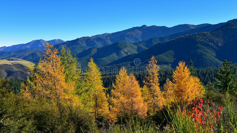 Scenic view of Hanmer Springs town and surrounding hills in Canterbury stock image