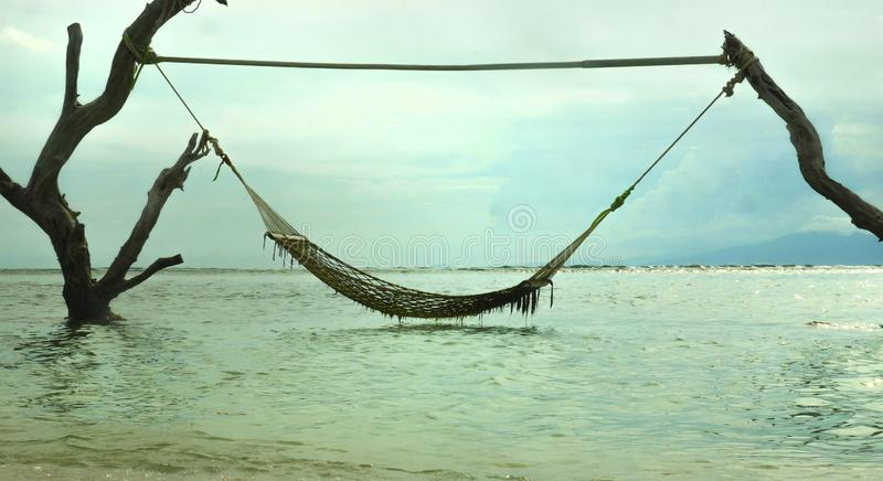 Scenic view of an inviting and tempting sea hammock amazing set up on tree trunks at tropical island beach in relaxing holidays royalty free stock photos