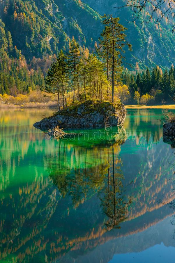Scenic View of Lake in Forest stock image