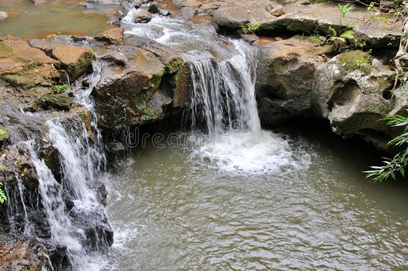 A scenic view of man made water falls in Black River Gorges natural park, Mauritius stock images