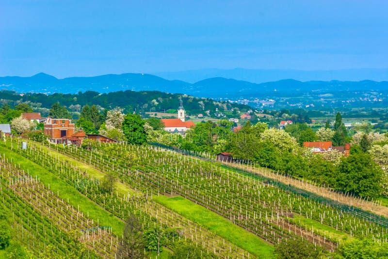 Vineyard in Croatia, Zagorje. Scenic view at marble vineyards in springtime in Zagorje region, Varazdin County stock photography