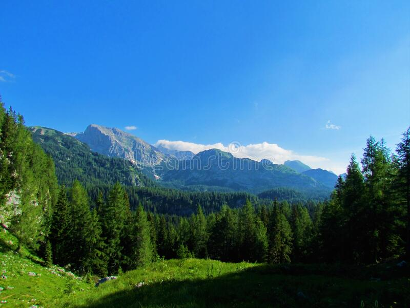 Scenic view of the mountains of the Julian Alps. In Triglav national park in Gorenjska region of Slovenia with green pastures and forests in front on clear royalty free stock photography