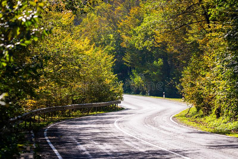Scenic view of a new road through autumn trees royalty free stock photos