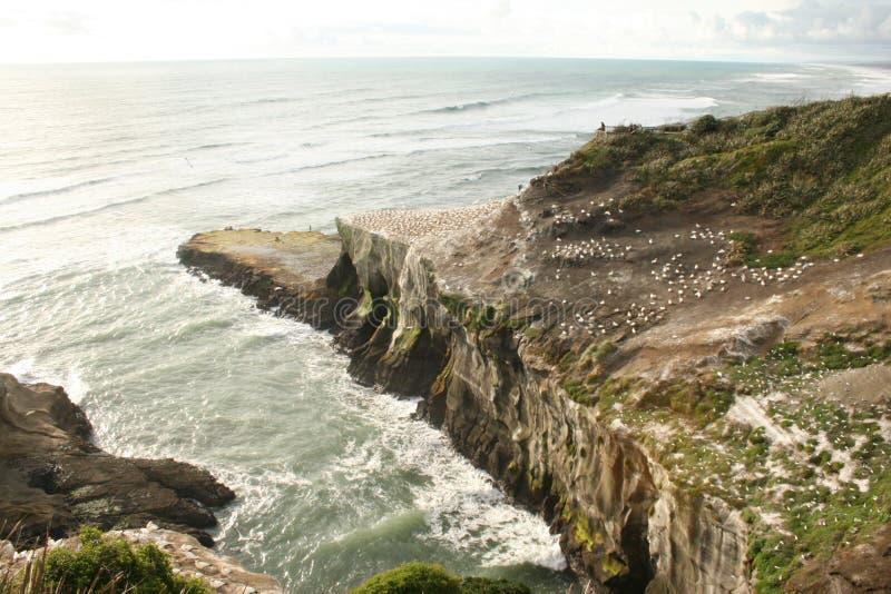 Scenic View of Ocean stock image