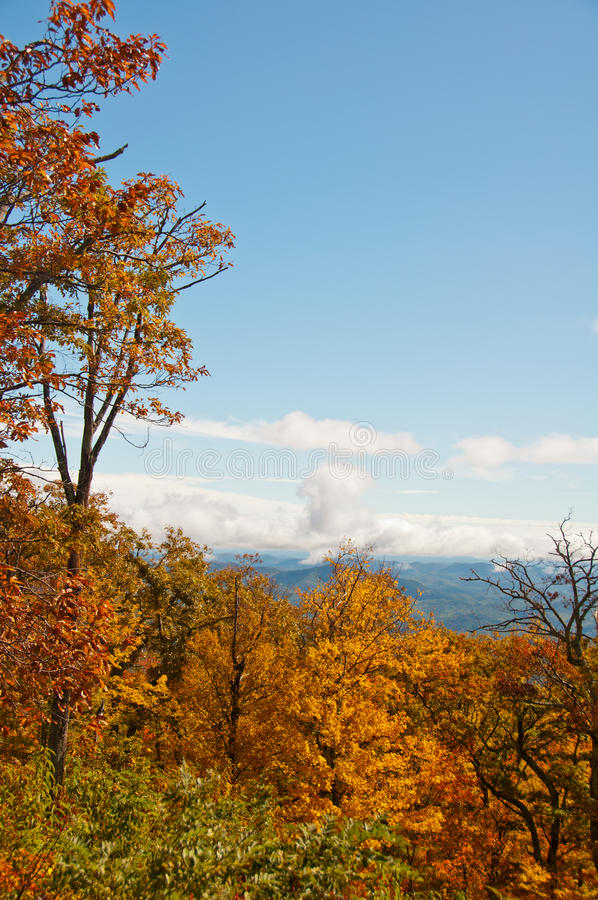 Free Scenic View Of North Carolina Fall Foliage Stock Image - 26676571