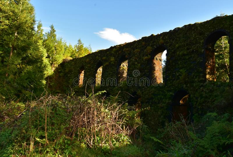 Scenic View of an Old Aqueduct Covered with Foliage stock photos