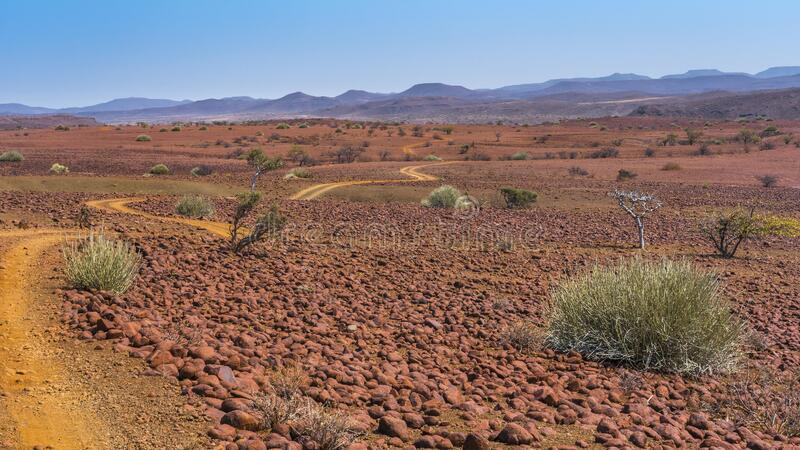 Scenic view of the Palmwag Concession Area in Namibia. Scenic view of the Palmwag Concession Area with milkbushes in Namibia in Africa royalty free stock image