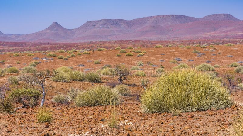 Scenic view of the Palmwag Concession Area in Namibia. stock photo