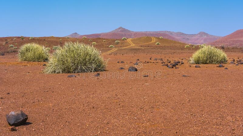 Scenic view of the Palmwag Concession Area in Namibia. royalty free stock photos