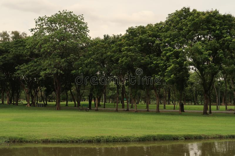 Scenic view in a park by a lake stock photo