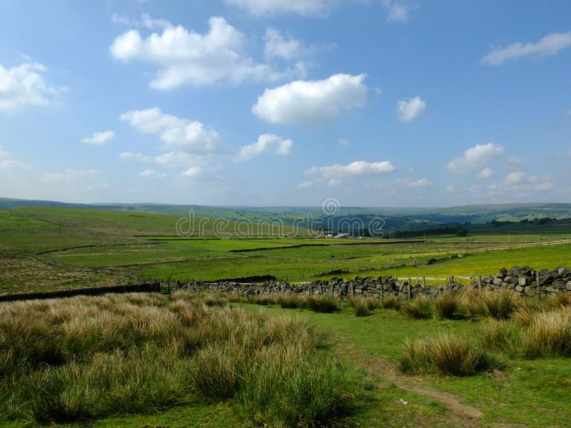 Scenic view of a path on the edge of moorland in calderdale west yorkshire with rough tussock grass with dry stone walls. Bordering pastureland with farmhouses stock photo