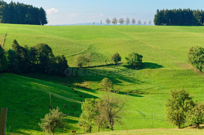 Scenic view of a picturesque landscape with mountain forests. Black Forest, Germany stock photography