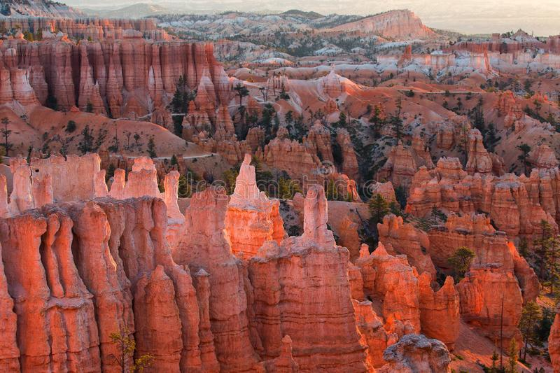 Scenic view of red sandstone hoodoos in Bryce Canyon National Pa royalty free stock photos
