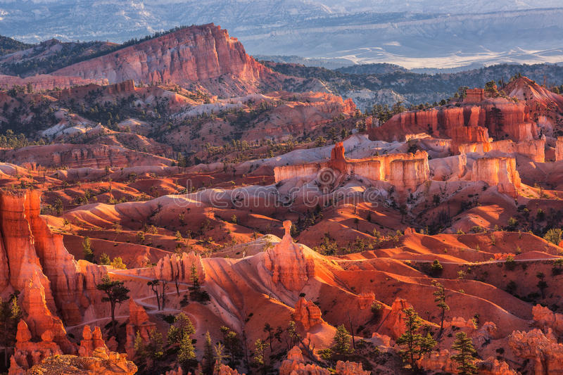 Scenic view of red sandstone hoodoos in Bryce Canyon National Pa royalty free stock image