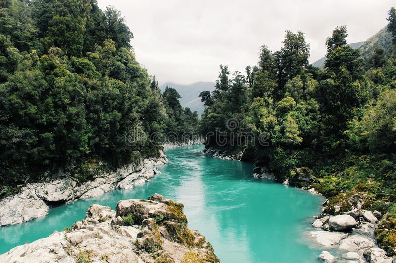 Scenic View of River royalty free stock photo
