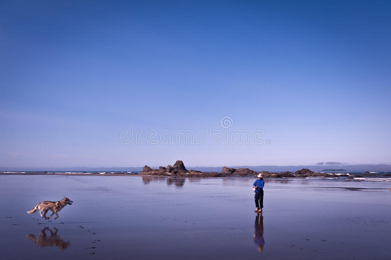 Scenic view of Ruby Beach with running husky dog and woman royalty free stock images
