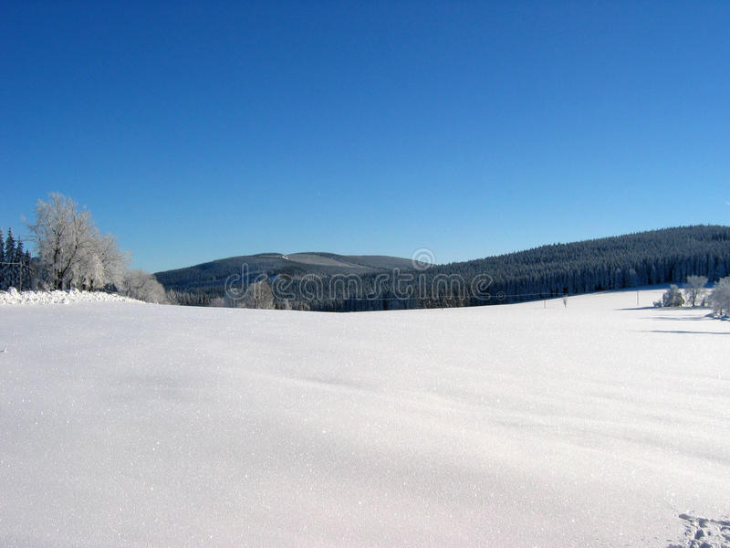 Scenic View Of Snowy Fields royalty free stock photography