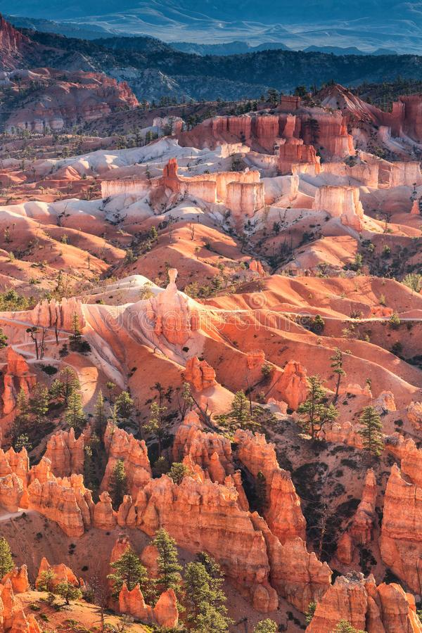 Scenic view of red sandstone hoodoos in Bryce Canyon National Pa royalty free stock photo