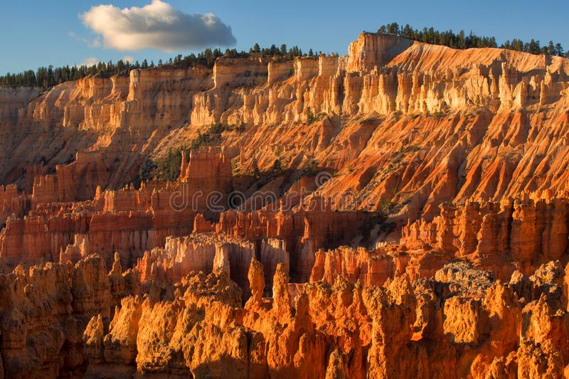 Scenic view of red sandstone hoodoos in Bryce Canyon National Pa royalty free stock images