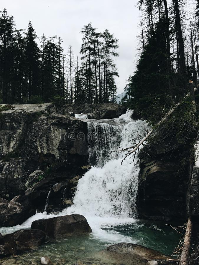 Scenic View of Waterfall in Forest Against Sky royalty free stock images