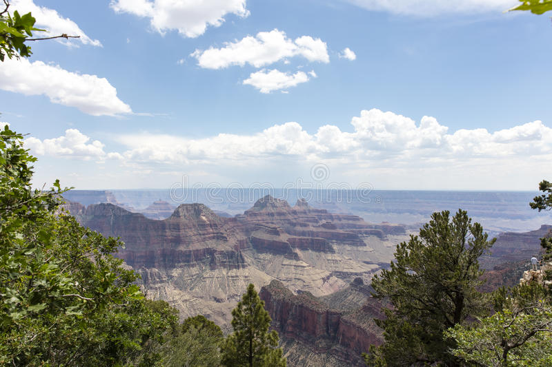 Scenic Views Of The Grand Canyon North Rim royalty free stock images
