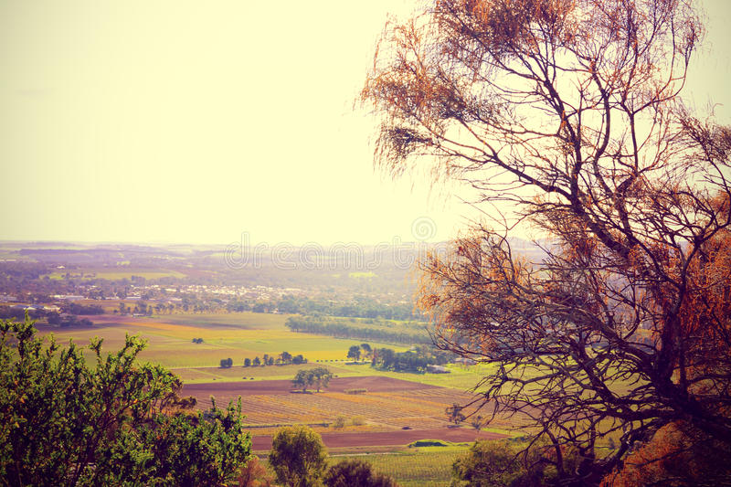Scenic views overlooking Barossa Valley royalty free stock photo