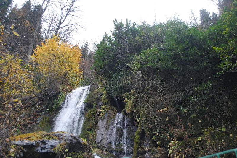 Scenic waterfall in the forest royalty free stock photo