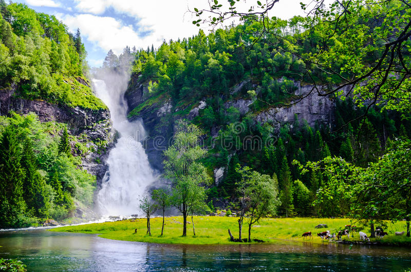 Scenic waterfall landscape in Norway royalty free stock photography