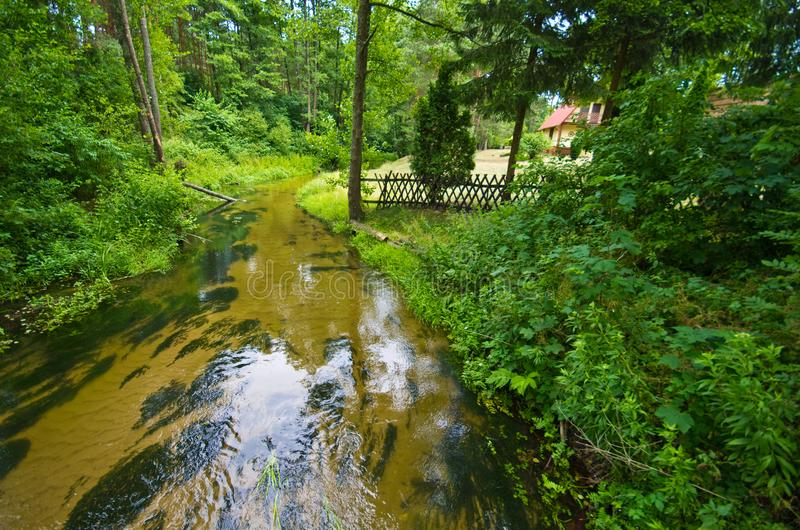 Sopot river in Roztocze region of Poland. A scenic wide angle view of a shallow river of Sopot running through green forest of Roztocze region in southern Poland stock photo