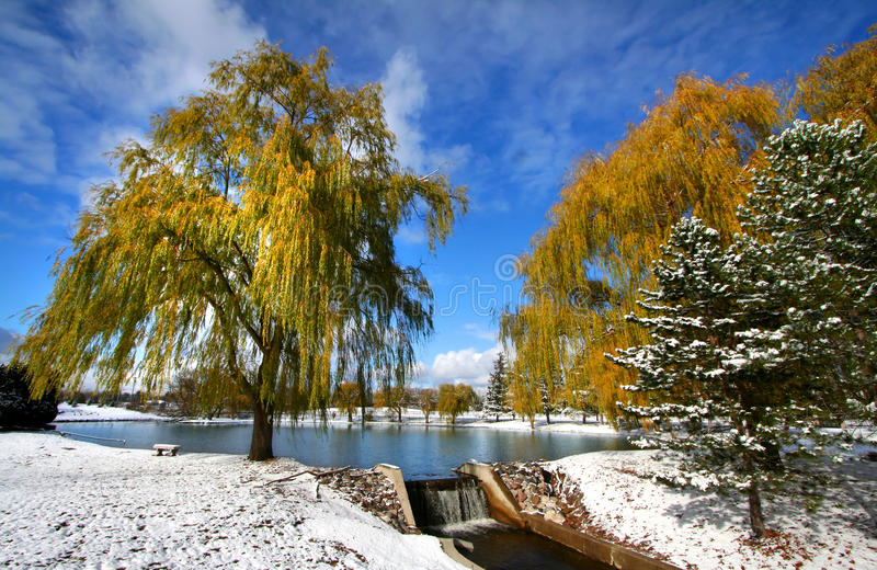 Scenic Winter Landscape Royalty Free Stock Photo