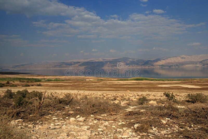 Scenics мертвого моря стоковое изображение rf