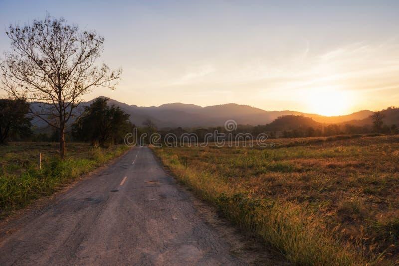 scenics do por do sol na estrada secundária fotos de stock