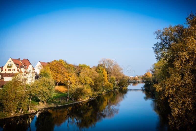 Scenics sikt av träd nära floden arkivfoton