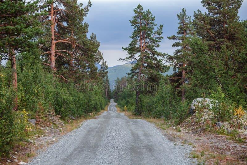 Sceniczna żwir droga w Oppland Norwegia Scandinavia zdjęcia royalty free