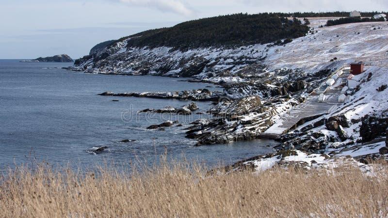 Sceniczna linia brzegowa w zatoczce, wodołazie i labradorze kieszonki, zdjęcie royalty free