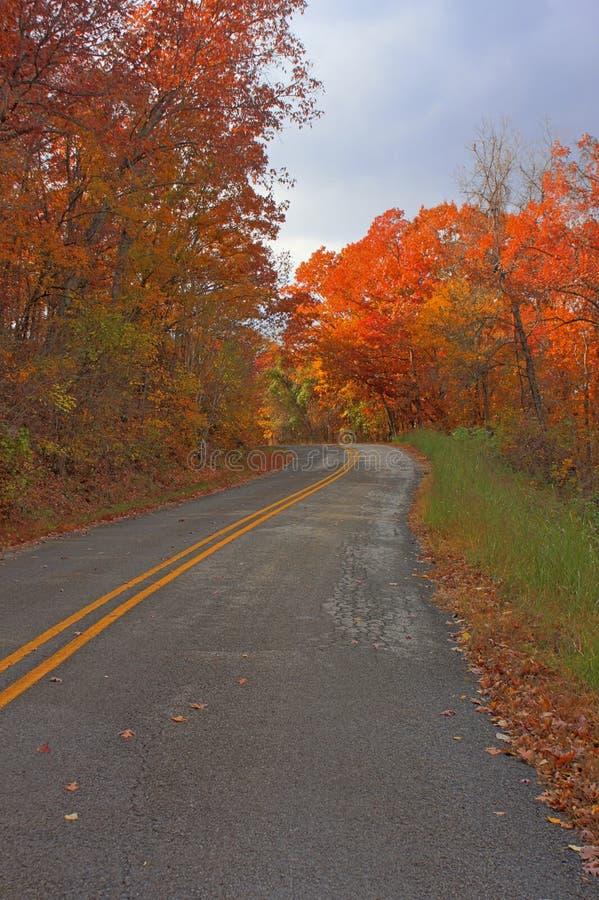Sceniczna wiejska droga w spadku, jesień obraz stock